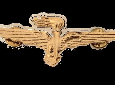 brevetto pilota militare osservatore paracadutista