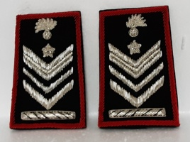 set brigadiere capo a qualifica speciale