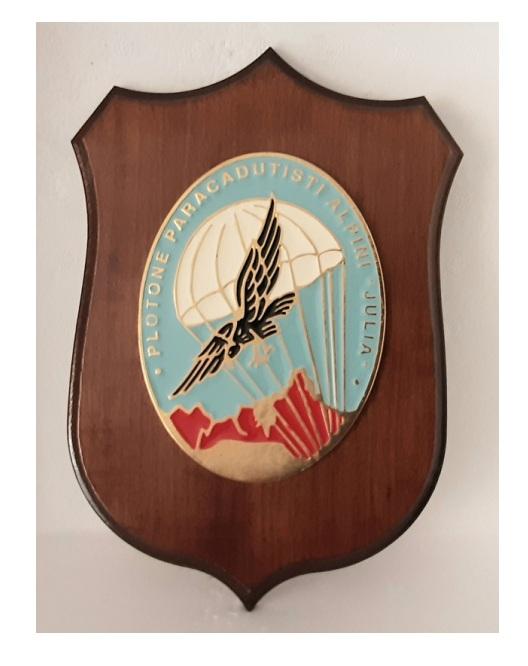 plotone paracadutisti Julia (crest)