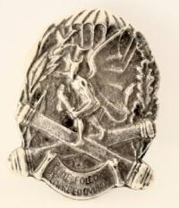 185° reggimento artiglieria paracadutisti